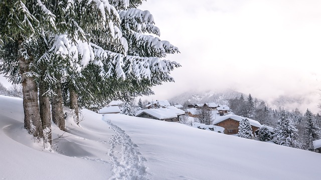 sníh v krajině
